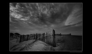 Coquina Beach Dunes