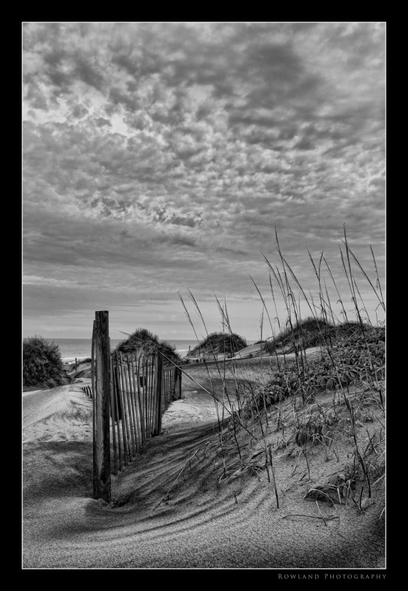 Dunes in Black & White