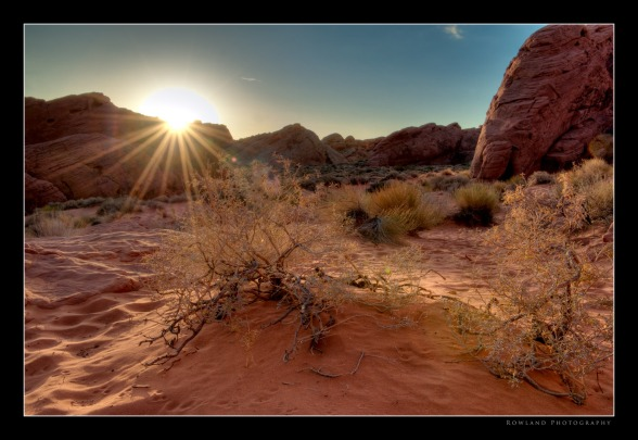 Sunburst at Sunrise (c) Joseph Rowland 2009