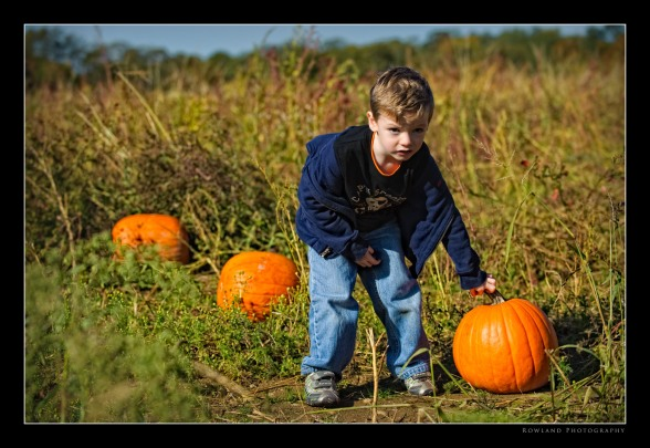 Aidan Pumpkin Hunt (c) Joseph Rowland 2009