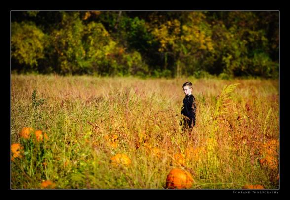 Tristan Pumpkin Hunt (c) Joseph Rowland 2009