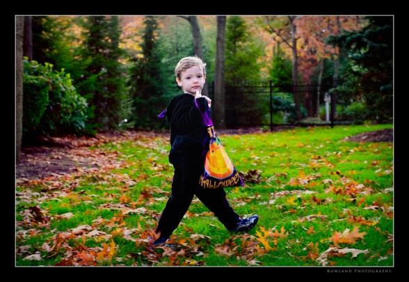 The Walking Bat (c) 2009 Joseph Rowland