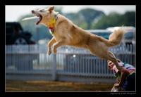 Mason Catching Air